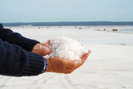 オーガニック塩